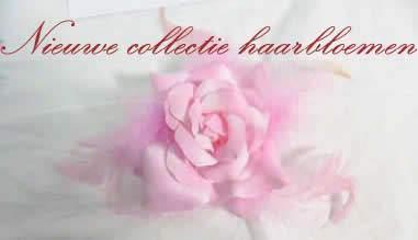 Nieuwe collectie haarbloemen